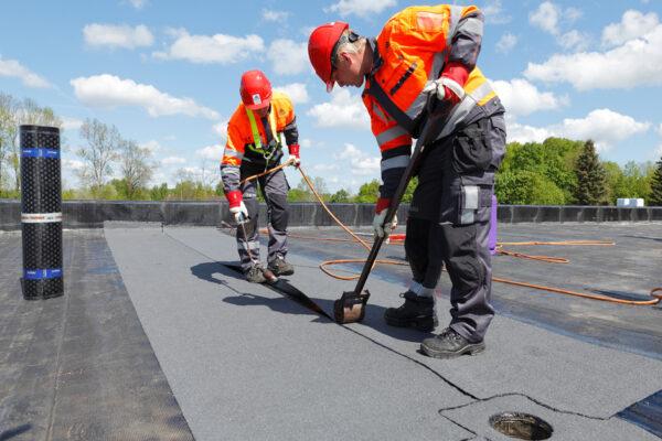 557-Erialane-professionaalsus-katuste-ehitamine-11